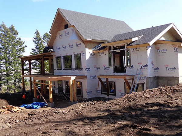 DIY timber frame with Tyvek on the SIPs walls