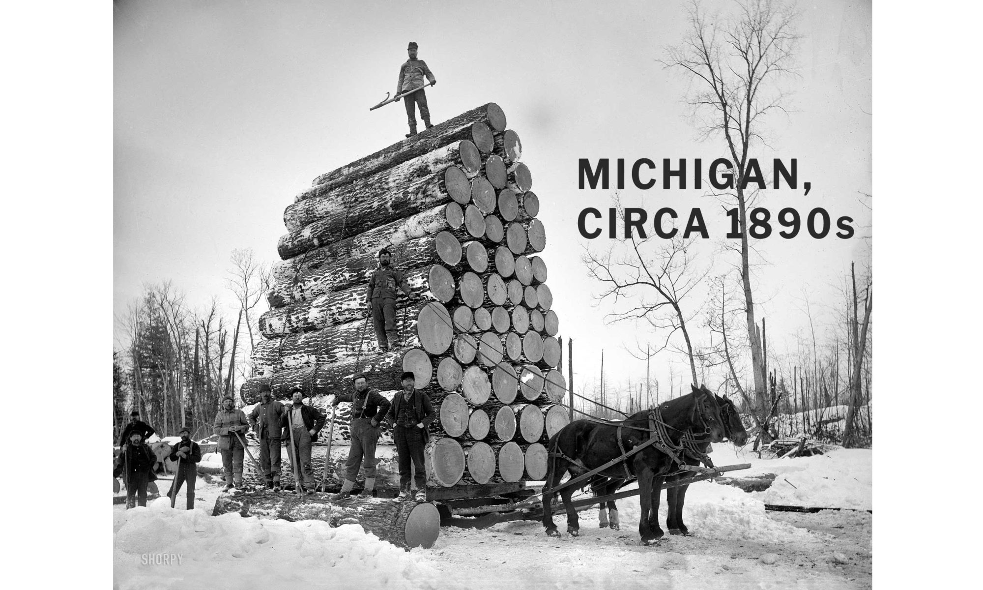 Historical photo of loggers surrounding a massive load of cut timber which is on a sled pulled by two horses